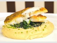Pikepearch on creamy spinach